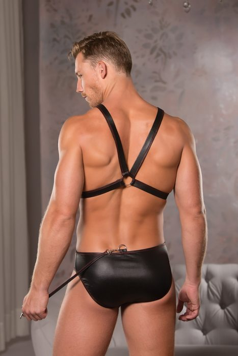 ZEUS WET LOOK HARNESS & BRIEF S/M